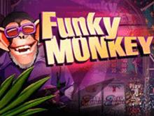 Аппараты Вулкана Funky Monkey